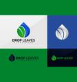 drop leaf logo brand identity logo design vector image vector image