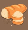 flat bread vector image