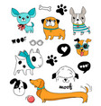 funny dogs puppies doodles sketches and vector image