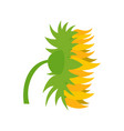 garden sunflower icon flat style vector image vector image