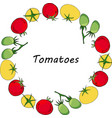 round garland with yellow red and green tomatoes vector image