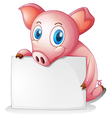 A pig holding an empty signage vector image vector image