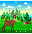 Deer in mountain landscape vector image vector image