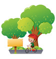 boy riding bike in the park vector image vector image