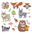 happy cartoon and funny wood animals in forest vector image vector image