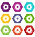 honey flower icons set 9 vector image
