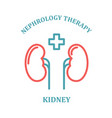 kidney simple icon - nephrology department vector image vector image