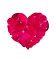 pink rose petals vector image vector image