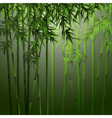 realistic bamboo vector image vector image