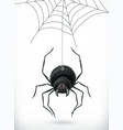 spider happy halloween 3d icon vector image