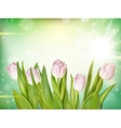 Tulips on bokeh background EPS 10 vector image