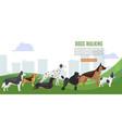 walking dog service web baner vector image