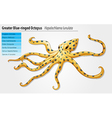 Blue-ringed octopus vector image vector image
