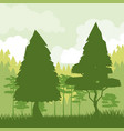 colorful background of green landscape of forest vector image vector image