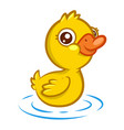 cute little yellow duckling with a smile swims vector image vector image