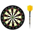 darts board vector image