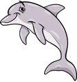 dolphin animal cartoon vector image