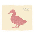 duck farm bird silhouette vintage label duck vector image
