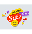 Just now sale banner vector image vector image