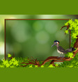a roadrunner bird in nature frame vector image