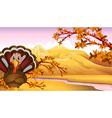 autumn turkey vector image vector image