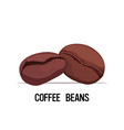 coffee beans organic healthy vegetarian food on vector image