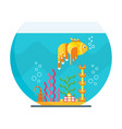 fish in aquarium vector image