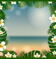 frame palm tree and plumeria vector image vector image