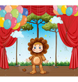 Kid in lion costume on stage vector image vector image