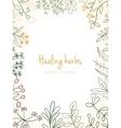 Vintage card of medicinal organic healing herbs vector image vector image