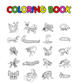 coloring book with collection of insects vector image