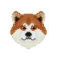 akita inu dog head in pixel art style vector image