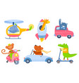 animal transport cartoon kids zoo characters in vector image vector image