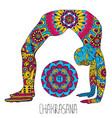 chakrasana pose in yoga vector image vector image