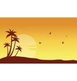 Silhouette of palm and bird at sunset vector image vector image