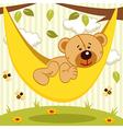 teddy bear on hammock vector image vector image