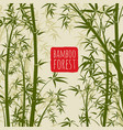 bamboo rain forest wallpaper in japanese vector image