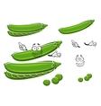 Cartoon pods of sweet green pea vector image vector image