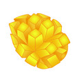cut yellow-orange mango isolated on white vector image vector image