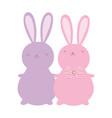 cute rabbits cartoon characters decoration design vector image vector image