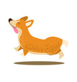 happy playing corgi icon vector image vector image