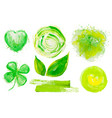 set fresh green watercolor design vector image