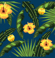 tropical flowers natural leaves background vector image vector image