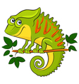 Chameleon Cartoon african wild animal character vector image vector image