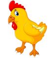 cute chicken cartoon posing vector image vector image