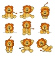 cute lion set vector image