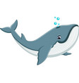 cute whale cartoon vector image vector image