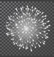 fireworks festival white firework vector image