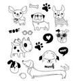 funny dogs puppies doodles sketches vector image