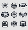 guarantee logo badge vector image